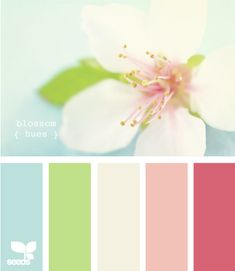 In love with this color scheme!  Soft blue, green and pink, with white and a deeper pink thrown in for good measure! Colour Pallette, Color Combos, Color Palate, Cores Logo, Couleurs Claires, Pastel Colors, Spa Colors, Wall Colors, Hallway Colours