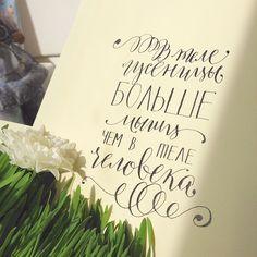 Calligraphy by Anna Liepina.  В теле гусеницы больше мышц чем в теле человека #calligraphy #moderncalligraphy  #каллиграфия  #гусеница #факт #интересно