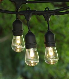 Feit Electric String Lights Custom Best Outdoor String Lights $59 Costco Feit Electric 48 Ft  For The Inspiration Design