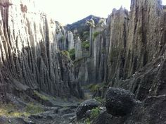 WELLINGTON, NZ: PUTANGIRUA PINNACLES There is no mistaking that these eroded pillars make up the Dimholt Road that Legolas, Aragorn and Gimli took when they first encountered the Army of the Undead. Location: Aorangi Ranges, North Island