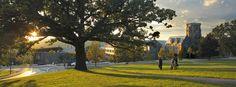 Cornell University. Photo by University Photography.