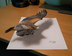 Self-Taught Artist Creates Incredible 3D Drawings That Seem Ready to Jump Off the Canvas - http://www.odditycentral.com/art/self-taught-artist-creates-incredible-3d-drawings-that-seem-ready-to-jump-off-the-canvas.html