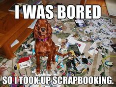 """I was bored... so I took up scrapbooking."" ~ Dog Shaming shame - Irish Setter - Scrapbook OBSESSION"
