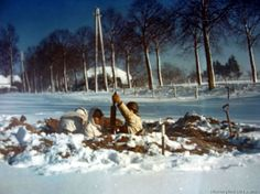 American soldiers man a dug-in mortar emplacement near St. Vith, Belgium. January 1945