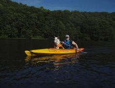 More kayaking with dog tips. Kayak Camping, Canoe And Kayak, Kayak Fishing, Kayak Dog, Kayaking With Dogs, Kayaking Tips, Austrailian Cattle Dog, Hiking Dogs, Walk In The Woods