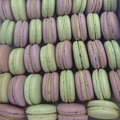 Lavender and mint macarons
