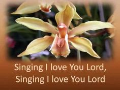 Beautiful and Reflective. Praise to Our God Most High in song. Made for our home group for times when no musician is with us. Praise And Worship Songs, Praise God, Gospel Music, My Music, I Love You Lord, My Love, Church Songs, Spiritual Songs, Vacation Bible School
