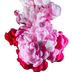 Advertising Photographer, Abstract Photography, Sydney, Invitations, Create, Rose, Artist, Flowers, Plants