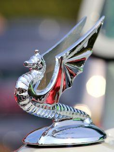 Winged Gryphon hood ornament