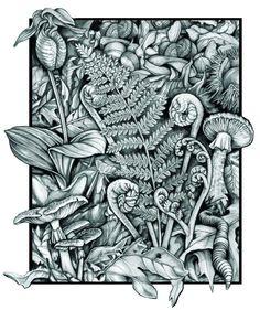 Undergrowth - Small
