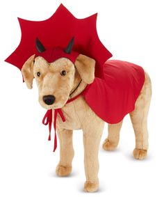 Glitter with Zelda Devil Dog Costume. Impress your friends with Dog Pet Costumes for Halloween at PartyBell. Puppy Halloween Costumes, Pet Costumes, Dog Halloween, Costumes Zelda, Adult Costumes, Costume Ideas, Devil Costume, Dog Clothes Patterns, Diy Stuffed Animals