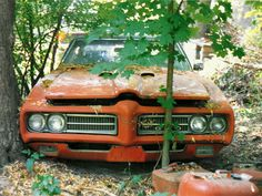 My '69 GTO Judge on the day we dragged it out of the woods.