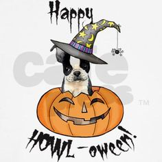 Time to have Halloween fun! Go Trick or Treating with this cute Boston Terrier puppy witch in a smiling Jack-o-Lantern. Great gift for kids of all ages who love Boston Terriers and Halloween.