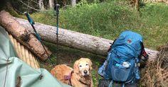 Blog über das Reisen und wandern. Zurzeit vorallem Wandern in der Schweiz. Fernziel ist der Fernwanderweg E1 Bern, Kanken Backpack, Trail, Backpacks, Switzerland, Adventure, Hiking, Viajes, Backpack