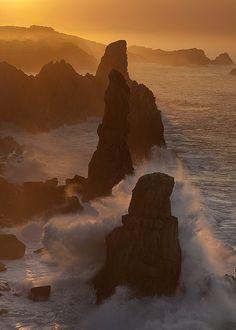 -thatonekidchris:Wild Coast