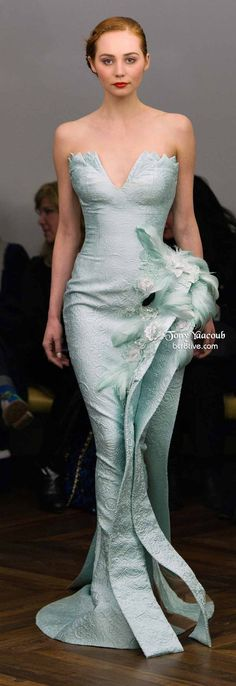 ..Tony Yaacoub Spring 2014 Couture