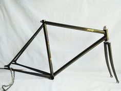 Image result for pias frame gold
