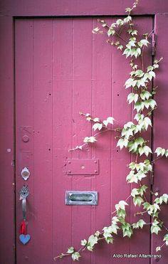 Pink door ♥