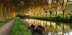 Wie schnurgerade aufgereiht säumen Platanen den Canal du Midi, hier bei Carcassonne in Südfrankreich. Die symmetrisch Spalier stehenden Bäume spenden Schatten, mindern die Verdunstung und festigen die Ufer. Die künstliche Wasserstraße verbindet mithilfe von 65 Schleusen seit 300 Jahren die französischen Küsten am Atlantik und am Mittelmeer – Diese Karte hier online kaufen: http://bkurl.de/pkshop-211377 Art.-Nr.: 211377 Baumspalier | Foto: © David Noton | Text: Rolf Bökemeier