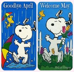 Snoopy Animated Goodbye February Welcome March Gif Hello May Quotes, April Quotes, Charlie Brown Quotes, Charlie Brown And Snoopy, Welcome May, Welcome Spring, Holidays In May, Snoopy Birthday, Snoopy Quotes