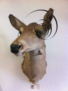 Beautiful doe that would be perfect in your master bedroom.  $300 Dysfunctional Grace Art Co - Downtown Saint Pete, Florida
