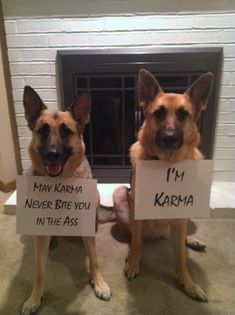 May Karma never bite you in the ass. - Via  http://www.dogshaming.com/2013/01/karma/