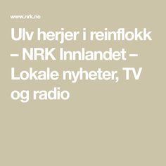 Ulv herjer i reinflokk – NRK Innlandet – Lokale nyheter, TV og radio Math Equations