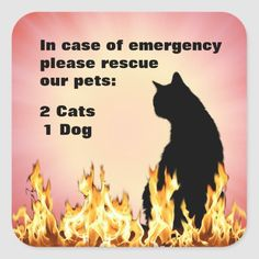 In Case Of Emergency, Pet Gifts, Pets, Poster, Billboard, Animals And Pets