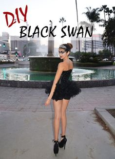 DIY Black swan. Ha I did this before even seeing this