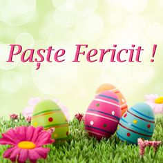 Happy Easter, Easter Eggs, Daily Routines, Instagram, Hip Bones, True Words, Easter Activities, Happy Easter Day