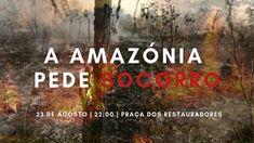 Rio Grande, E Dublin, Dvd, Painting, Saint Victoria, Tropical Rain Forest, Brazil Cities, Manaus