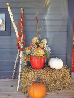 Bouleau a vendre....si vous êtes à la recherche de branches de bouleaux afin de décorer vos balcons (un peu comme les 2 photos) et bien je suis la personne qu'il vous faut!!!! j'ai des branches de 5-6-et 7 pieds...5$ la branche!!! ndeslauriers@hotmail.com