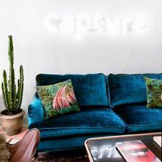 Blå Lejonet sammetssoffa. Sammet, soffa, howard, mässing, hjul, möbler, inredning, vardagsrum, Rami Hanna.