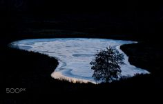 Cold and Lonely - Isolated, cold and lonely tree in next to a frozen, midwinter pond.