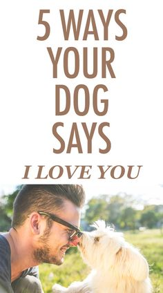 "5 Ways Your Dog Says ""I Love You"" http://iheartdogs.com/5-ways-your-dog-says-i-love-you/"