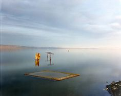 Richard Misrach Dead Fish, Salton Sea