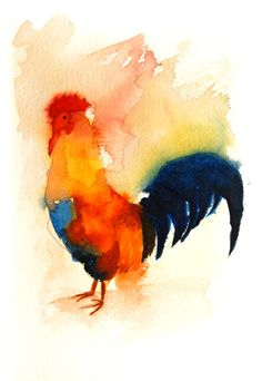 Rooster by Ciaran Duffy