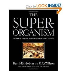 This volume expands our knowledge of the social insects (among them, ants, bees, wasps, and termites). These superorganisms—a tightly knit colony of individuals, formed by altruistic cooperation, complex communication, and division of labor—represent one of the basic stages of biological organization, midway between the organism and the entire species.