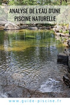 Spas, Guide, Nature, Old Trains, How To Build, Swim, Pools, Plunge Pool, Homes