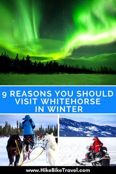 9 reasons why you should visit Whitehorse in the Yukon Territory in winter #Whitehorse #Yukon #wintertravel #Whitehorseinwinter #northenrlights #dogsledding