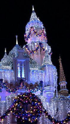 Disneyland California Adventure, Disneyland Trip, Disney Vacations, Disney Trips, Christmas World, Purple Christmas, Christmas Photos, Merry Christmas, Christmas Lights