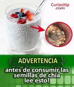 Advertencia del Consumo de Semillas de Chia   Curiositip Nutrition, Health Tips, Healthy Lifestyle, Oatmeal, Beverages, Health Fitness, Pudding, Lunch, Meals