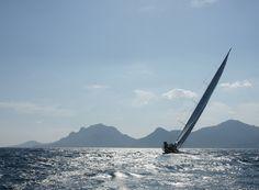 Wally sailboats