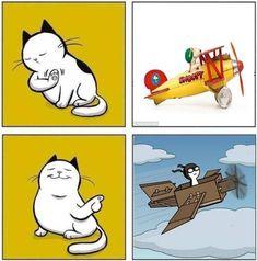 Los gatos y las cajas de cartón. (spinoff meme otro usuario)