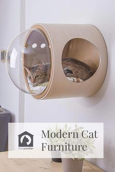 Best Furniture Stores #FurnitureSale Product ID:9922453827 Modern Cat Furniture, Pet Furniture, Painted Furniture, Furniture Stores, Diy Cat Tent, Diy Tent, Diy Old Tshirts, Cat Activity Centre, Cat Towers