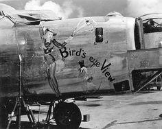 """B-24 Liberator Bomber """" Birds Eye View """""""