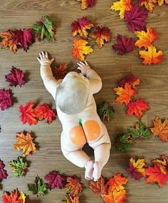 Fall Baby or Toddler Photo Shoot Baby Kind, Baby Love, 2 Monat Baby, Baby Kalender, Foto Newborn, Newborn Pics, Fall Newborn Photos, Infant Photos, Baby Newborn