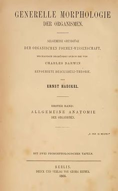 File:Haeckel1866 Deckblatt.jpg