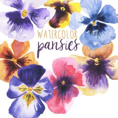Watercolor Clip Art Floral Pansy Clip Art by DigitalPressCreation