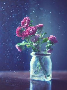 flowers in cups conceptual photography Flower Phone Wallpaper, Flower Wallpaper, Still Life Photos, Spring Day, Still Life Photography, Flower Photos, Cute Wallpapers, Trees To Plant, Flower Power